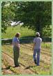 Tony Nesbitt: Cane Creek Valley Farm photo