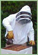 Andrew VonCanon: Busy Bee Farms photo