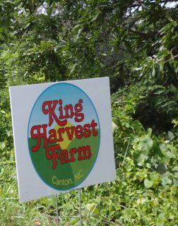Steve and Terry King: King Harvest Farm photo