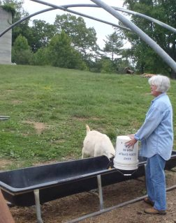 Ronald and Cheryl Searcy: Wells Farm photo