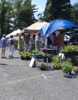 Watauga County Farmers Market photo